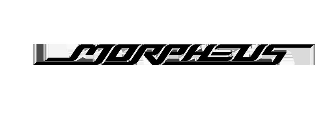 2016 Morpheus Factory Team